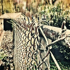 Happy Fence Friday Flickr Friends! (RansomedNBlood) Tags: dreams prisma fence iphone8 hff