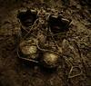 boots (amazingstoker) Tags: muddy boots van gogh artist crabtree plantation walk laces basingstoke amazingstoke basingrad a30