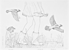 MeadowWalk1 (Alex Hiam) Tags: illustration pen ink drawing meadow nature bobolink wildflower grass landscape girl walking boots