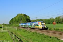 Des couleurs (Lion de Belfort) Tags: train chemin de fer ligne 4 l4 sncf ter bibi b 82500 82512 agc bombardier champagneardenne alsace lutran valdieulutran montreuxvieux champ girouette