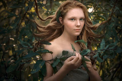 In the Garden ({jessica drossin}) Tags: jessicadrossin woman wwwjessicadrossincom girl teen redhair redhead apple hair curls tangle leaves nature green freckles dress lace portrait
