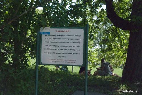Сад бузків Ботанічний сад імені Гришка InterNetri  Ukraine 05