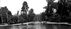Golestan Palace (afs.harp) Tags: black white pool trees historical palace garden