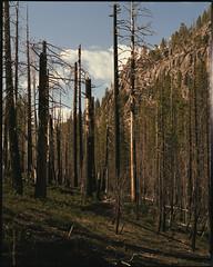 Lassen Volcanic Natl Park on medium format film (Garrett Meyers) Tags: pentax67 garrett meyers garrettmeyers filmphotographer film mediumformat 120 lomo400color lomo 400iso clouds colorfilm c41 6x7 lassen mtlassen volcanicpark