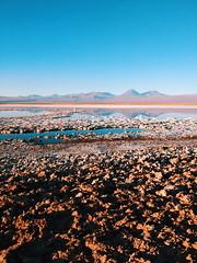 (giovanibr) Tags: chile atacama salar deserto desert sanpedrodeatacama elloa antofagasta laguna tebinquiche lagoon lagoa sal salt landscape paisagem licancabur vulcão volcano reflexo reflaction