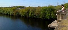 Is Sunbathing Dangerous? (sapko1961) Tags: lancaster aqueduct water tree trees sky boy sony
