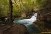 Nacedero del Urederra III. (Ernest Bech) Tags: navarra river riu saltdaigua cascada waterfall rio arbre trees arbol landscape longexposure llargaexposició