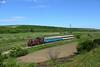 Springtime Near the Danube (Krali Mirko) Tags: bdz train diesel locomotive faur 55196 oresh bulgaria railway transport danubianplain бдж влак локомотив дизел ореш българия