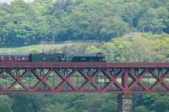 Flying Scotsman on Forth Bridge  41 (Bill Cumming) Tags: fife forthbridge riverforth steamtrain flyingscotsman