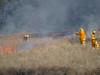 Controlled burn of grasslands - 4 - Barton - ACT - Australia - 20180428 @ 11:08 (MomentsForZen) Tags: barton australiancapitalterritory australia au momentsforzen mfz hasselblad x1d stmarksntc stmarks stmarksnationaltheologicalcenter accc australiancenterforchristianityandculture controlledburn grasslands grassfire fire bushfire flames smoke wind