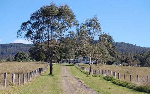 16401 Clarence Way, Bean Creek NSW 2469