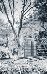 Two Paths to Choose By (Maureen Medina) Tags: maureenmedina artizenimages train railroad tracks bw blackandwhite journey