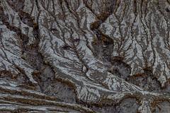 Banino_20180422-054816-39 (airbreather) Tags: sempol jawatimur indonesia volcano erosion crater gully gullies volcanic