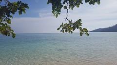 Thailand (Alhennah) Tags: koh rok island crystal clear water sea sand thailand snorkeling