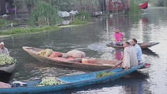 Man in pink (Nagarjun) Tags: floatingvegetablemarket flowers dallake kashmir srinagar commerce trade veggies kohlrabi dawn morning sunrise green