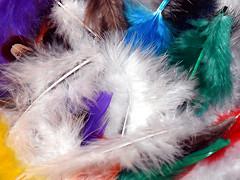 Feathers. (robárt shake) Tags: feathers federn bunt basteln spielen kreativ sortiment eingefärbt freizeit gestaltung kunstfedern keimfrei