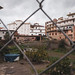 Arenas: Backyard