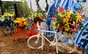 flowers on the bicycles (Alex Chirila) Tags: canon eos m10 1545 mm sunny day keukenhof flower colors colorfull park close up