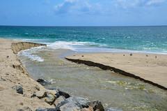 Laguna Beach - California (TravelMichi) Tags: californa california travel usa2018 lagunabeach usa us