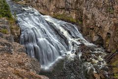 Gibbon Falls (Philip Kuntz) Tags: gibbonfalls gibbonriver waterfall falls grandlooproad yellowstone wyoming