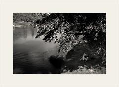 Son and Father by the River (piontrhouseselski) Tags: cz south moravia dolni kounice bw