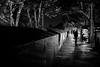 Paris, la nuit (pas le matin) Tags: nb bw noiretblanc blackandwhite travel voyage city ville night world monochrome paris france europe europa seine quai bouquinistes quaideseine capital canon 350d canoneos350d eos350d