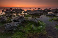 Classical Baltic sea (Andrei Reinol) Tags: eesti estonia estonianlandscape baltic balticsea balticlandscape europe nordic scandinavia landscape landscapephotography travel outdoors adventure sunset evening colors orange green sky noclouds nopeople leefilter sonyalpha7r sony sea seascape beach rock stone grass