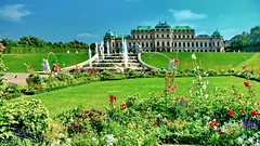 Vienna Belvedere (gerard eder) Tags: world travel reise viajes europa europe austria österreich city ciudades cityscape cityview viena vienna wien belvederepalace belvedere palace palacio palast schloss schlos garden garten gardens jardines park parque flowers flores blumen outdoor städte stadtlandschaft