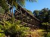 Trestle bridge (whitworth images) Tags: victoria rail historic wooden old australia gumtree trestle eucalypt forest noojee piers trestlebridge railway bridge eucalyptus poles tall
