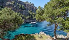 Mallorca20180417-08672 (franky1st) Tags: spanien mallorca palma insel travel spring balearen urlaub reise portdesacalobra illesbalears