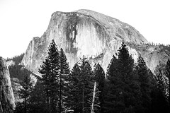 Three Ways of Making Photographs (Thomas Hawk) Tags: america california halfdome nationalpark newyearseve newyearseve2011 usa unitedstates unitedstatesofamerica yosemite yosemitenationalpark yosemitevalley bw tree fav10 fav25 fav50