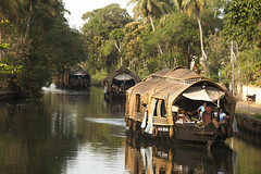 Cruising On The Backwaters, Kerala, India (Steve Weaver) Tags: india kerala backwaters boat boats rice lowlight palm palms coconut boating travel touring tourism reflections