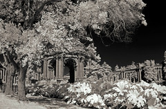 Palace of Fine Arts (Oscardaman) Tags: infrared 720 nm a moment san francisco sanfranciscopalaceoffineartsinthemarina