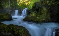 Spirit Falls in Spring (Skamania county, WA). (Sveta Imnadze) Tags: nature landscape waterfalls spiritfalls skamaniacounty wa columbiagorge travel hiking spring