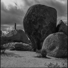 Vertical (ADMurr) Tags: california jtnp desert joshuatreenationalpark hasselblad 80mm clouds zeiss planar kodak film dac856