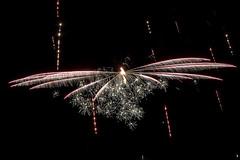 skyfly (the-father) Tags: fireworks sky dragonfly fairy fruehlingsfest weiden upperpalatinate oberpfalz bavaria bayern germany