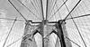 brooklyn bridge (poludziber1) Tags: nyc ny newyork usa america brooklyn bridge black white blackandwhite manhattan abstract skyline