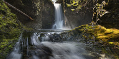'The First Bowl' - Nile Creek, Vancouver Island (Gavin Hardcastle - Fototripper) Tags: vancouverisland nile creek britishcolumbia moss waterfall summer light rays