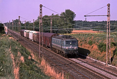 SNCF CC7152 with a southbound livestock train leaving Dijon Gevrey Chambertin during August 1996 (mikul44171) Tags: animals sunflowers tournesol cutting dijon august1996 cc7152 cc71xx gevrey livestock plm