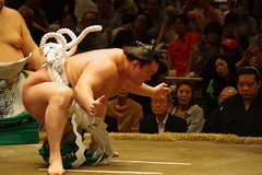 YOKOZUNA (t14zucca) Tags: pentax k3 55300mm plm japan tokyo sumo 相撲 白鵬 横綱 yokozuna