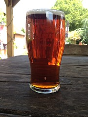 "A pint of ""Reg's Tipple"" made by the Gribble Inn Brewery. (whiskymac) Tags: ale ales realale beer regstipple"
