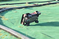 D7P_2011_00001 (scottr99) Tags: losi 5ivet 5t rccar rctruck