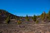 el Teide (Vinh To 1938) Tags: tenerife teide gigantes spain canairias canarie spagna isla island isola canon vittorio cera travel viaggi 2018 volcano vulcano panorama