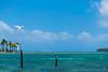 Charran Común (Sterna hirundo) - Archipiélago de San Blas (carlosbenju) Tags: ave aves bird birds water agua mar sea oceano ocean playa beach azul blue cielo sky panama sanblas bote boat barco ship islas islands island