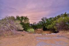 African dawn (stevelamb007) Tags: sunrise dawn southafrica mountainzebranationalpark easterncapeprovince stevelamb nikon d90 landscape