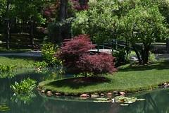 Gibbs Gardens, in North Georgia (USA) (rootcrop54) Tags: gibbsgardens ballgroundgeorgia cherokeecounty georgia may2018 northgeorgia gardens
