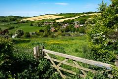 Through The Gate (Simon Downham) Tags: gate meadow field hills may 2018 carisbrooke lush landscape newport england unitedkingdom gb