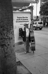 (wigmore126) Tags: bass musician candid streetphoto streetphotography sanfrancisco missiondistrict epsonv500 nikonl35af film trix