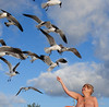 Gull Whisperer of Haulover (jerbec) Tags: jerbec naked nude nudist naturist beach nudebeach haulover fl florida atlantic ocean gull seagull shorebird becky