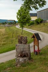 Omgeving Densborn (Walk 3680) Tags: allemagne bitburg densborn deutschland duitsland eifel erntehof europa europe germany kontaktgroepbree kyll kyllburg nrw neidenbach neuheilenbach noordrijnwestfalen nordrheinwestfalen rheinlandpfalz rijnlandpalts vakanties vulkaaneifel wandelingen wanderung8 d50 lente middengebergte nikon route8 spring wandelen